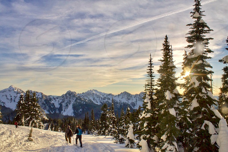 Snow winter snowshoeing outdoor recreation trees high altitude  photo