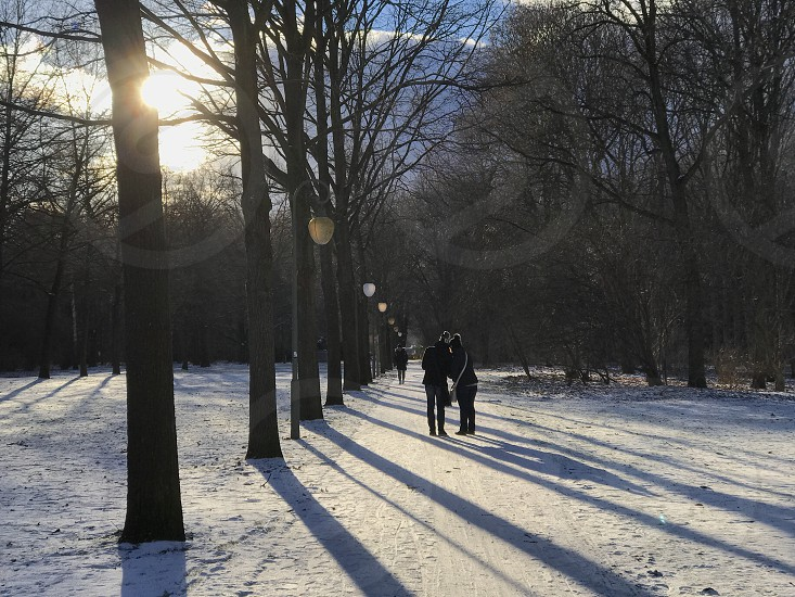 Berlin park winter street people friend silhouette  together partner snow Europe  Germany photo