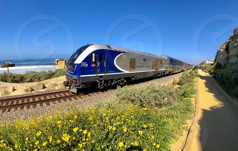 Facing Extinction Request Trains and Rail Travel Locomotives Train Coastal Train Track Transportation Rail Railway Mass Transit Locomotive Beach Train Surfliner Beach Trail Fish Eye Lens Wild Flowers Trails photo