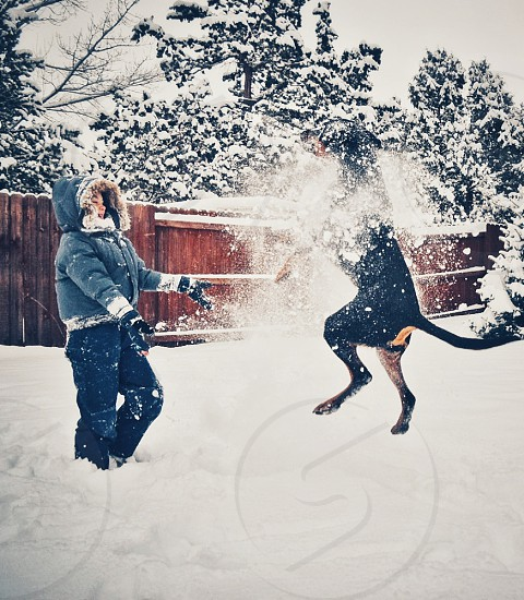 snowball fight with dog photo