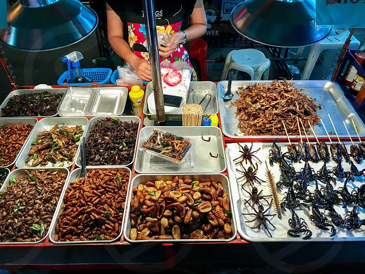 Outdoor day colour landscape horizontal Bangkok Thailand Thai Kingdom Asia Asian East Eastern Orient culture travel wanderlust tourist tourism khao San Road city urban food foodstuffs refreshment insects tarantula centipede worm scorpion grub edible market street food photo