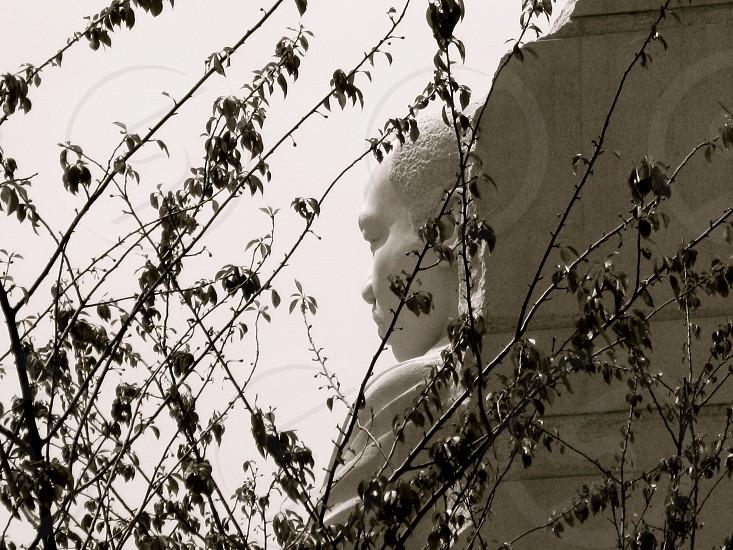 MLK Memorial #my hero photo