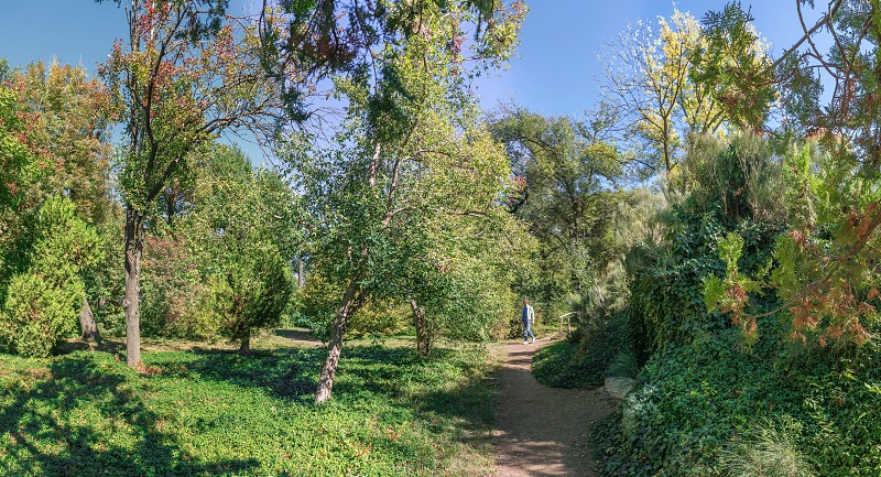 Trees in the Old Botanical Garden in Odessa Ukraine on a sunny autumn day photo