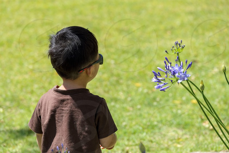 A little boy looking at a flower with sunglasses on outdoor photo