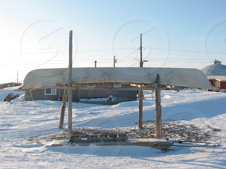 Seal skin boat whaling Eskimo Native Point Hope Village Alaska winter photo