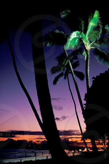 Sunset at Waikiki Beach in Honolulu Hawaii.  photo