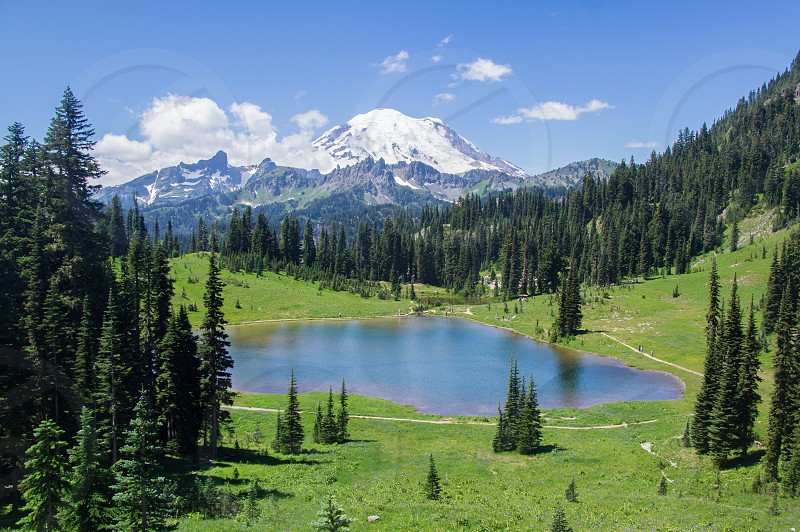 Small lake surrounded by grass and trees with Mount Rainier in the background.  Fluffy clouds in the sky. photo