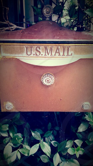 Mail anyone??  photo