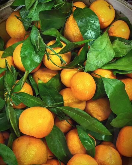 Tangerines with green leaves photo