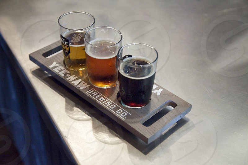 Craft beer flight in Johnson City Tennessee photo