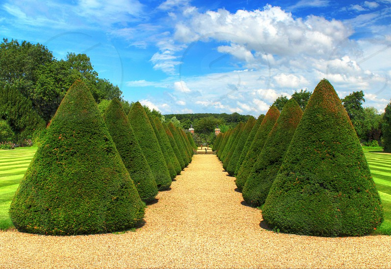 Perfect hedges photo