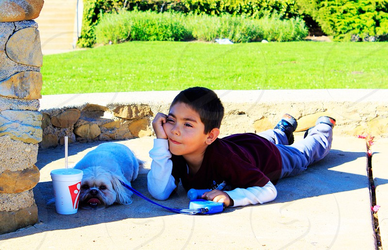 Boy dog kid child puppy bored waiting unhappy shade hot summer Ventura California cute funny lunch snack burger lazy relax park grass view  photo
