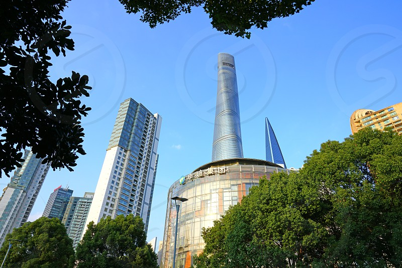 The Shanghai Tower in Shanghai China photo