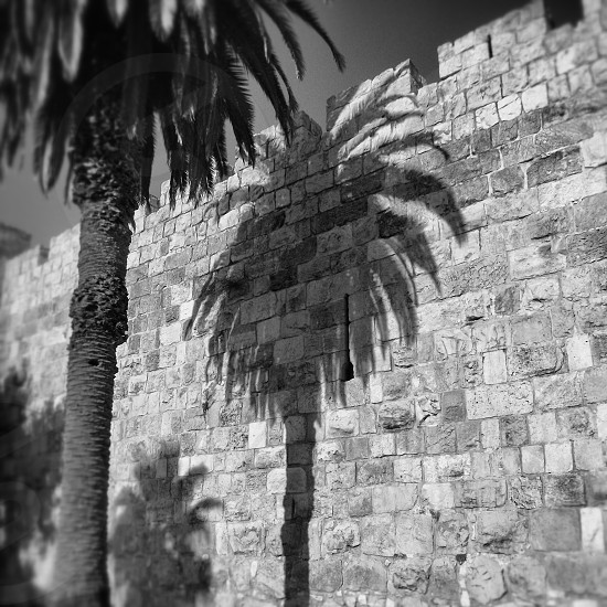 Israel Jerusalem: old City  photo