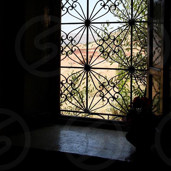 silhouette photo of black floral window grill photo