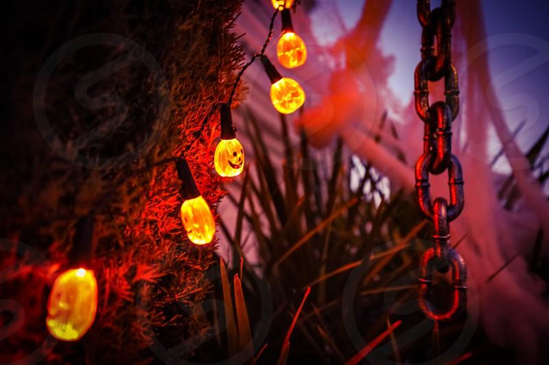 halloweendecorationhomecutespookylightsdecordesigngreentreeschainpumpkinorange photo