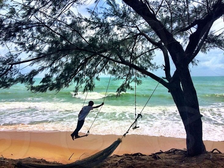 Swinging by the sea. photo