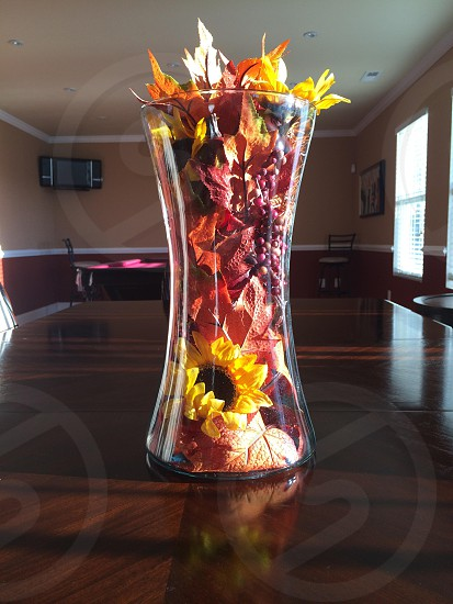 Fall in a vase photo