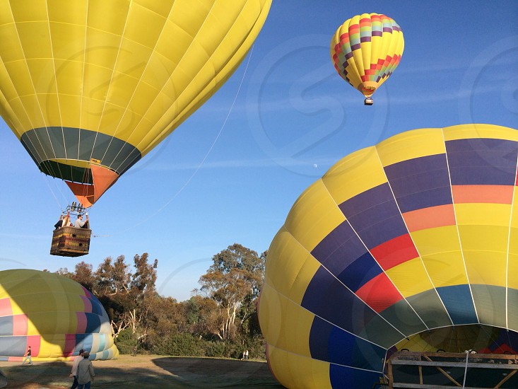 blue red yellow and grey hot air ballon photo