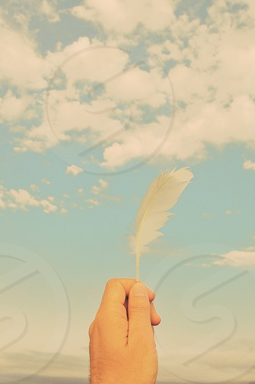 person holding white feather photo