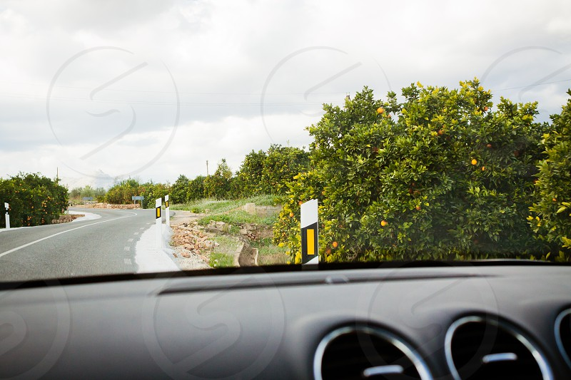 road trip car travel spain traveling explore exploring outdoors oranges orange trees driving drive first-person road trip dashboard europe spanish photo