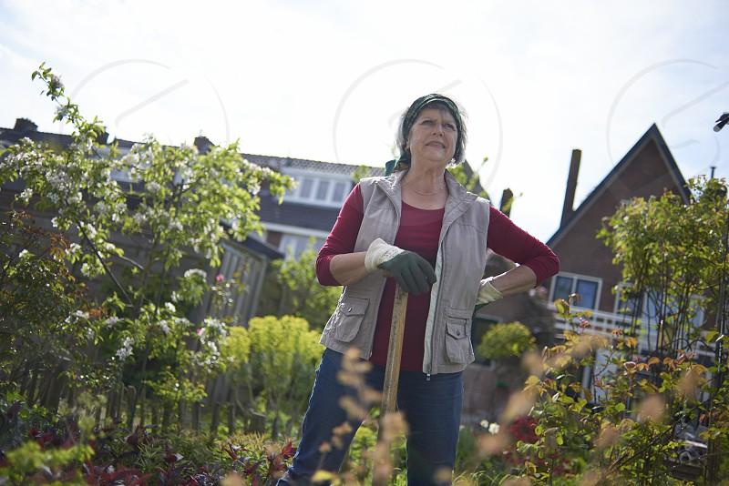 Healthy elderly woman hard at work shoveling in her back garden photo
