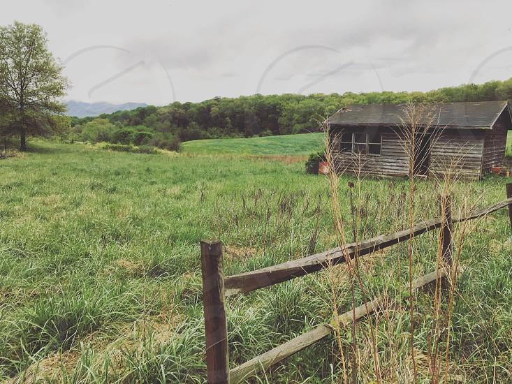 Deserted shed photo