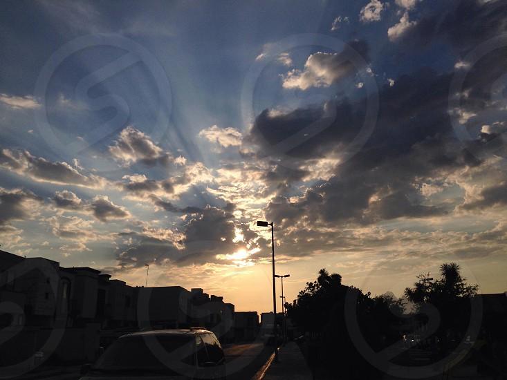 God's creation. photo