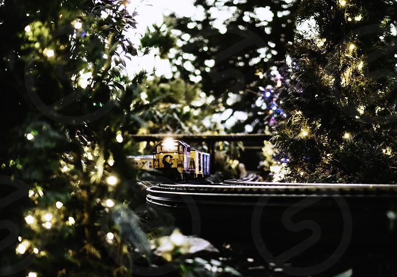 Electric train surrounded by Christmas lights and trees photo