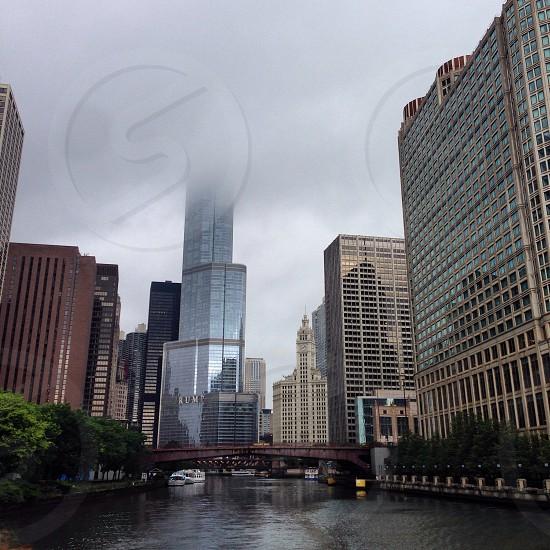 Chicago River - Chicago photo