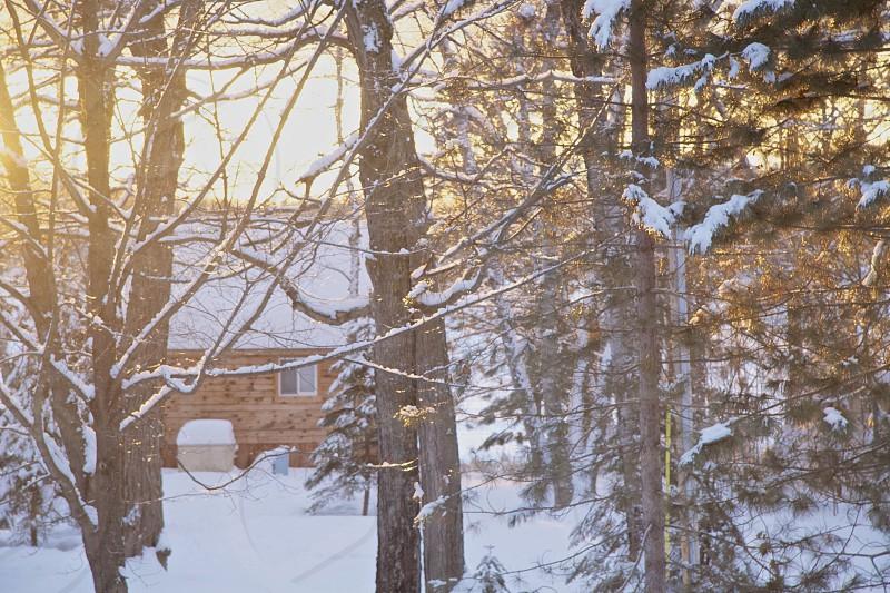 winter cabin photo