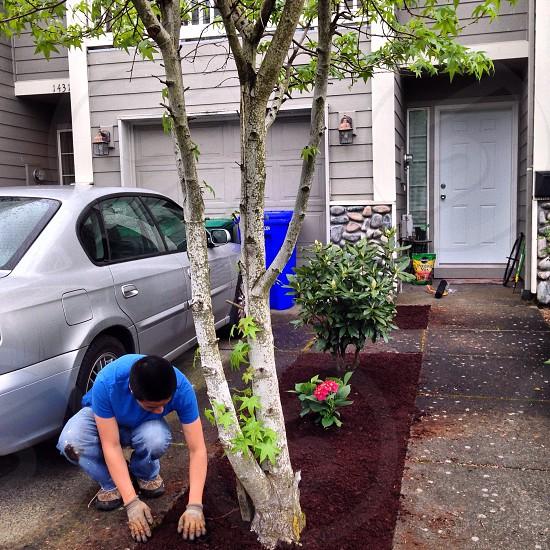 man in blue crew neck shirt picking loam soil photo