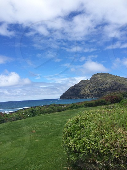green grass field in front of blue sea under cumulus clouds photo