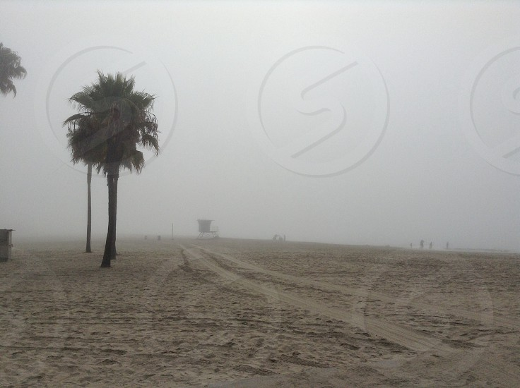 Foggy beach photo