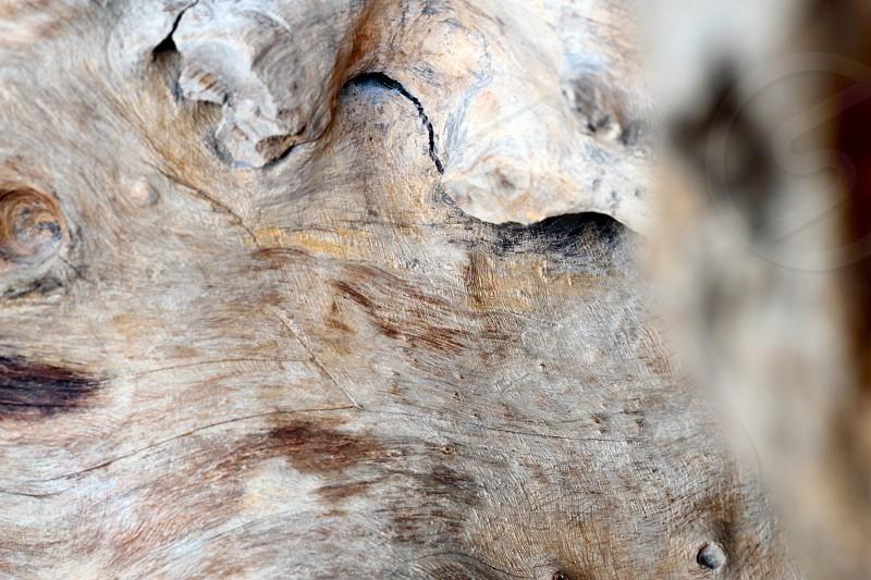 Woodgrain closeup photo