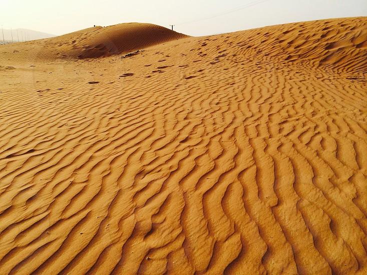 Deserts  photo