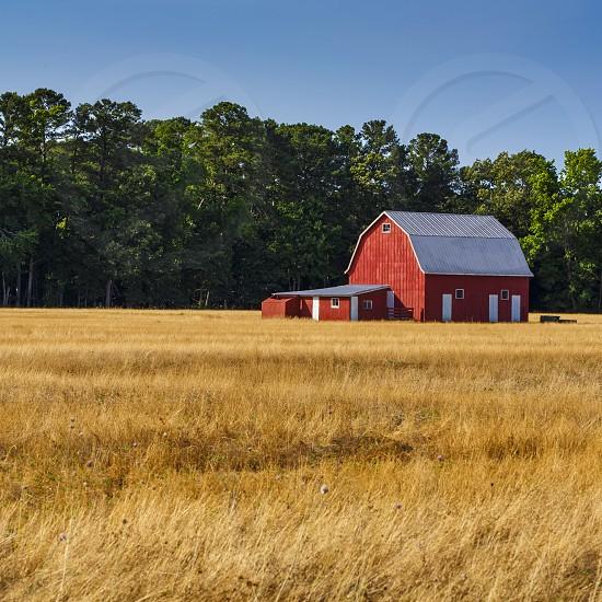 Idyllic rural farm scene in rural MD USA photo