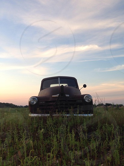 brown classic car on grass photo