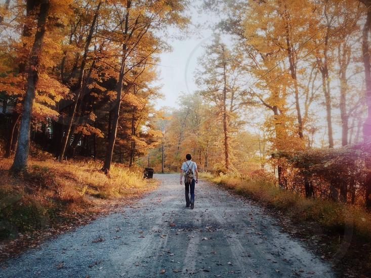 Exploring and admiring the Fall foliage at sunrise in The Pocono Mountains. photo