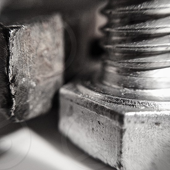 stainless steel nut  photo