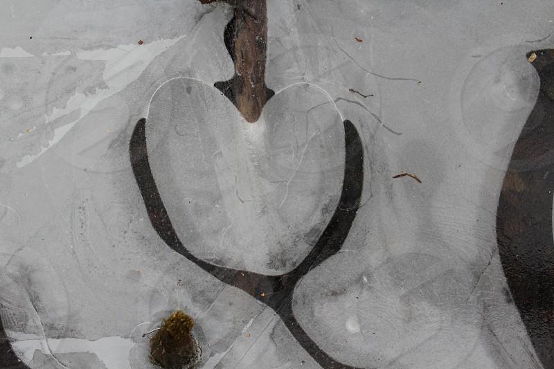 grey heart shape concrete piece photo