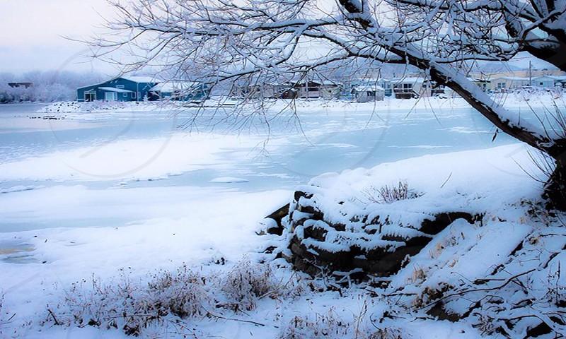 Wintery Frozen Lake photo