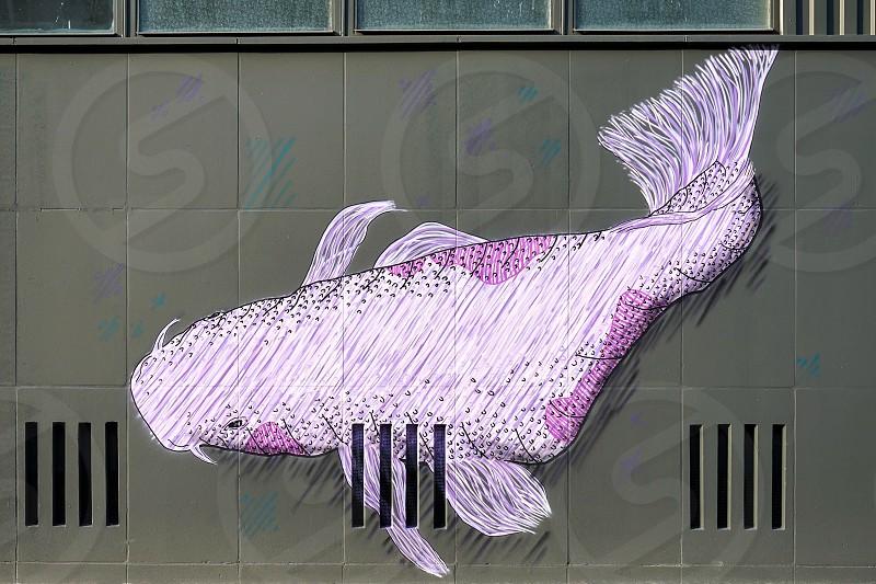 Whale mural in a street in Berlin photo