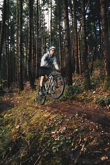 man in gray hoodie wearing gray bicycle helmet driving hardtail bike and doing wheelie on forest photo