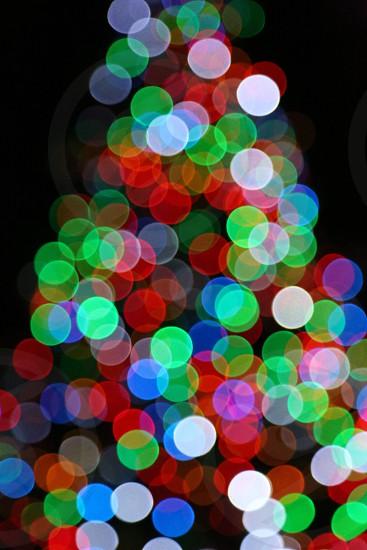 Bokeh Christmas Tree photo