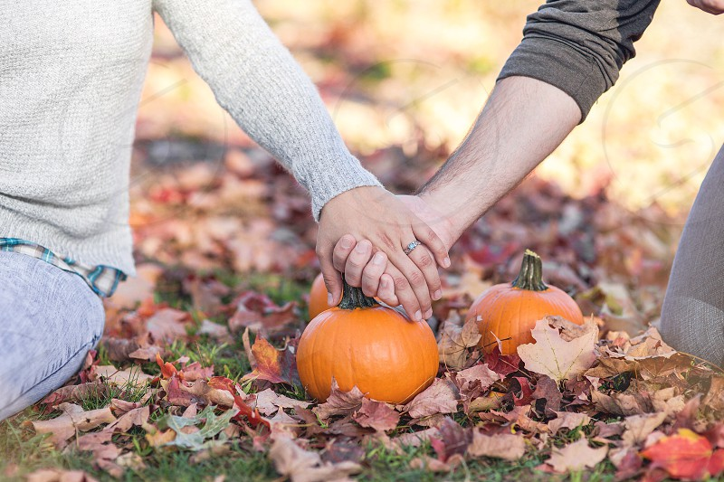 coupe holding their hands each other over 3 pumpkins photo