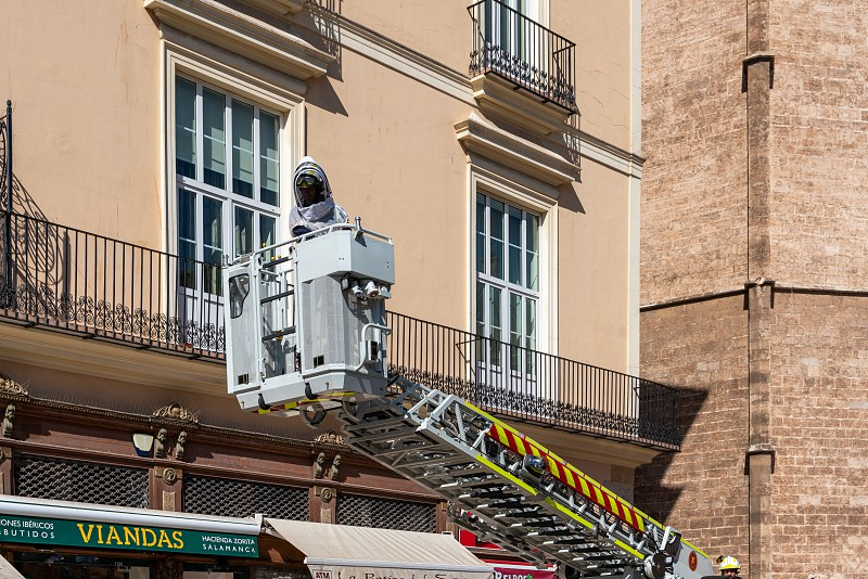VALENCIA SPAIN - FEBRUARY 25 :  Fireman looking for a dangerous strain of bees next to the Cathedral in Valencia Spain on February 25 2019. One unidentified person photo
