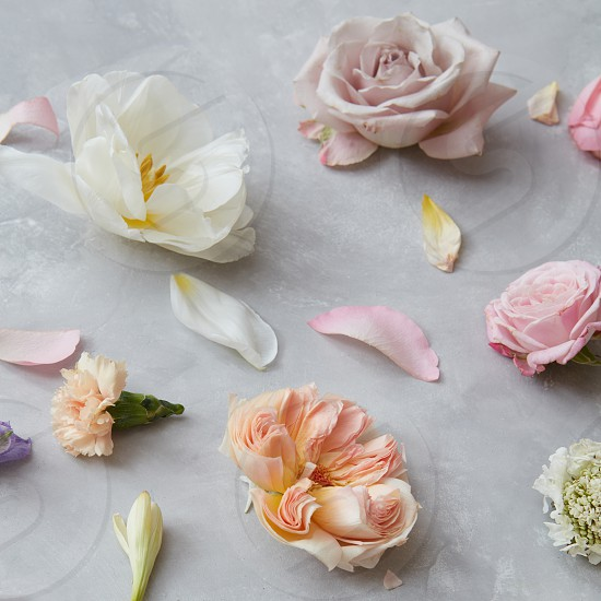 Close up of background of beautiful flowers for greeting card or wedding decoration photo