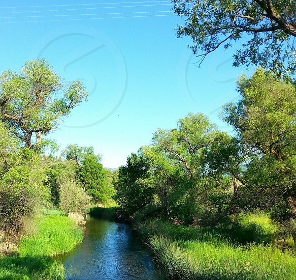 river flowing clear water kool trees blue sky natur photo