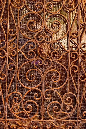 brass floral gate photo